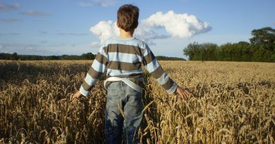 boy standing in a farm field of wheat cereal crop