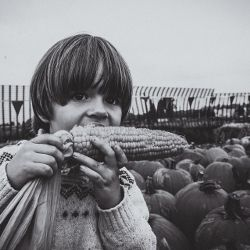 child on a farm eating an ear of corn