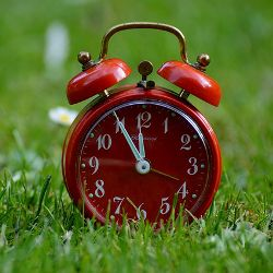 Bright red analog alarm clock in a field of green grass