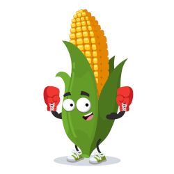 cartoon clipart of a smiling ear of corn with boxing gloves