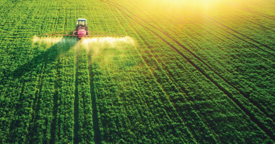 Spraying pesticides.