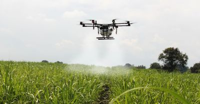 drone spraying herbicide and pesticide on a farm field crop of sugar cane