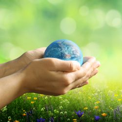 persons hands holding a small globe of the earth in a meadow with grass and tiny flowers
