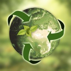 green planet earth with recycling arrows surrounding it and topped with leaves