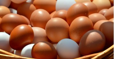 basket of brown and white chicken eggs