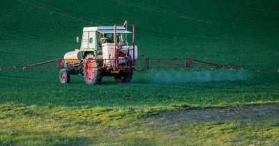 tractor on a farm field spraying pesticides on a crop of plants