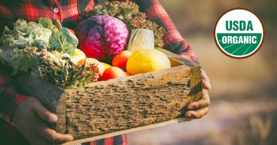 farmer with a wooden box of organically grown and freshly harvested produce and vegetables