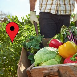 farmer with a wheelbarrow of harvested produce and a map location icon