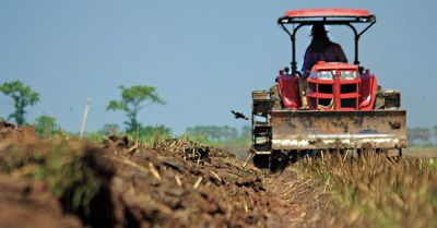 farmer in a red tractor moving along rows of crops in a farm field