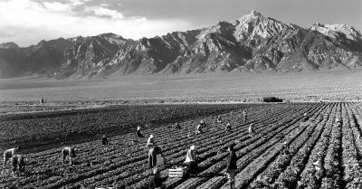 farm workers in a crop field at the foothills of a mountain
