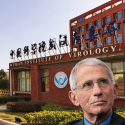 Anthony Fauci in front of the Wuhan Institute of Virology