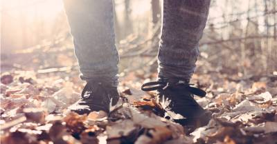 pair of feet standing in the forest on fallen autumn leaves