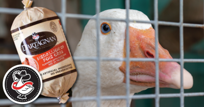 white colored goose with a DArtagnan package of foie gras