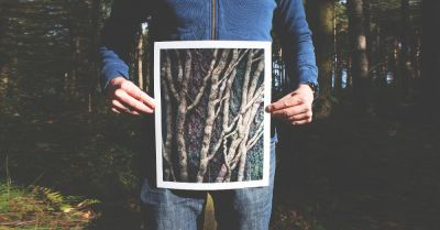 man in a forest holding a picture of a root system