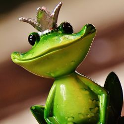 Green frog prince wearing a crown