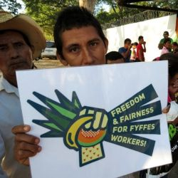 Honduran melon farmer hoping to decertify from FTUSA