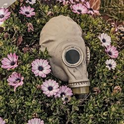 Gas mask amongst a garden of purple flowers