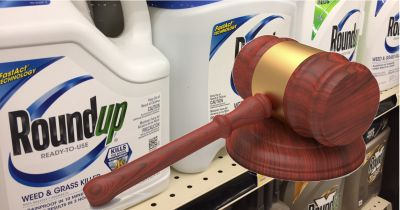 Monsantos Roundup bottles on a store shelf behind a wooden judges gavel