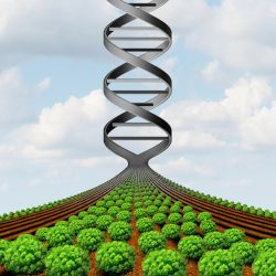 rendering of a farm field crop turning into a gene helix