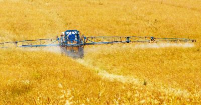 crop sprayer spraying a field before harvest