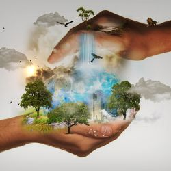 two hands holding a representation of nature with trees animals and water