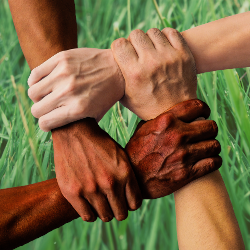 people holding hands together in united teamwork over dew dropped grass