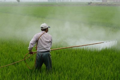 Farmer spraying pesticides on a farm field