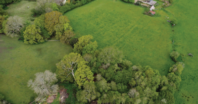 A drone shot of a green area.
