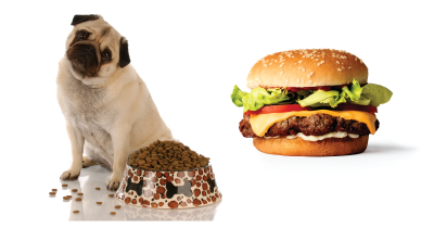 Dog food and Impossible burger