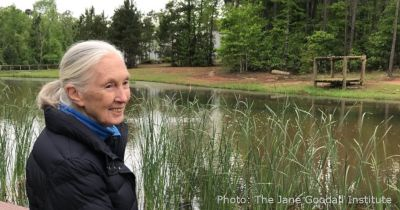 Jane Goodall of the Jane Goodall Institute at the edge of a river