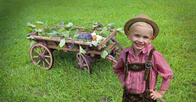 Happy kid with a wagon of vegetables