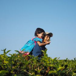 man and young girl in an agricultural field