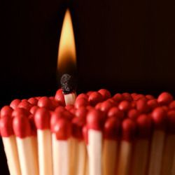 cluster of matches with a single match lit with a flame