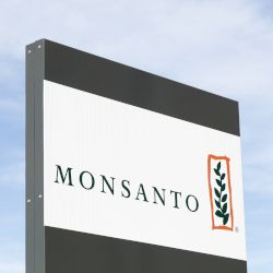 company logo on a sign of Monsanto against a blue cloudy sky