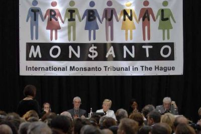 Testimony at the Monsanto Tribunal at the Hague