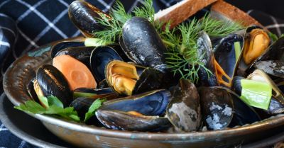 mussels and seafood in a bowl with fresh greens