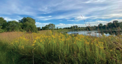 A view of native plants and water.