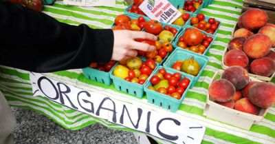 Organic food at farmers market stall