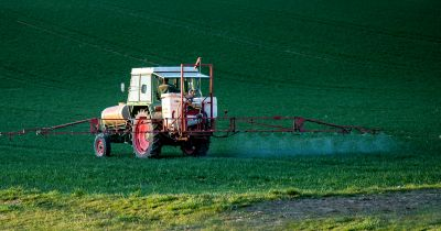 Tractor spraying pesticides on field