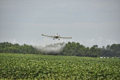 Disturbing New Evidence About What Common Pesticides Can Do To Brains