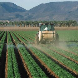 farmer in a tractor spraying a crop field with pesticides