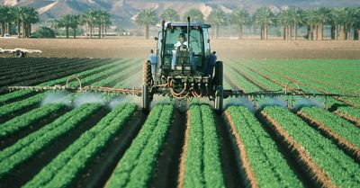 Farmer spraying pesticides in a crop field