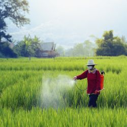 farmer in a field spraying pesticides or herbicides