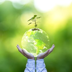 pair of hands holding a translucent planet earth with a small seedling tree plant growing out the top