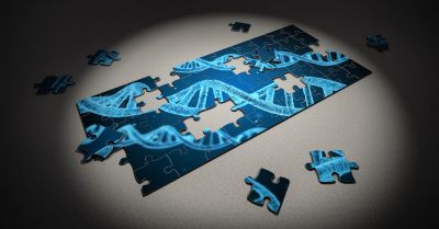 puzzle pieces of genetic dna being placed together