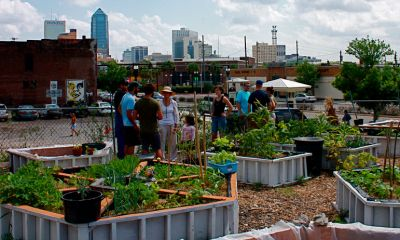 Urban Farms and Gardens Are Feeding Cities Around the World