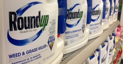 Row of jugs of Roundup on the shelf at a store