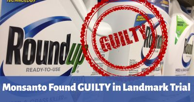 red GUILTY stamp over a blue bottle of Monsantos Roundup herbicide