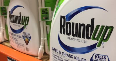 bottles of Monsantos glyphosate herbicide ROUNDUP on a store shelf
