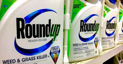 bottles of Monsantos Roundup glyphosate herbicide on a store shelf